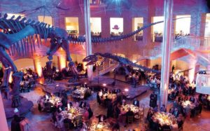 Your guests can dine with the dinosaurs at the Fernbank Museum of Natural History.