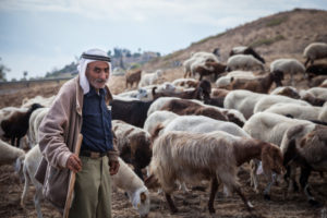 A goatherd goes about his business near Tiberias.
