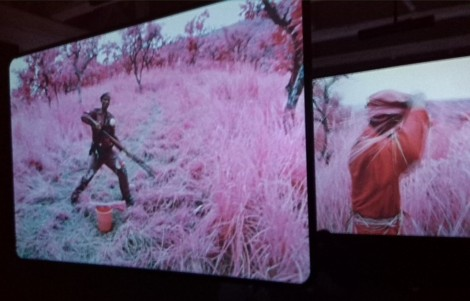 "Screens of videos from ""The Enclave"" 2013 by Richard Mosse, video, photo by Ahuva Passow-Whitman"