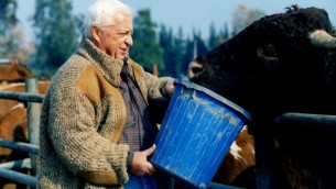 Ariel Sharon working on his Sycamore Farm.