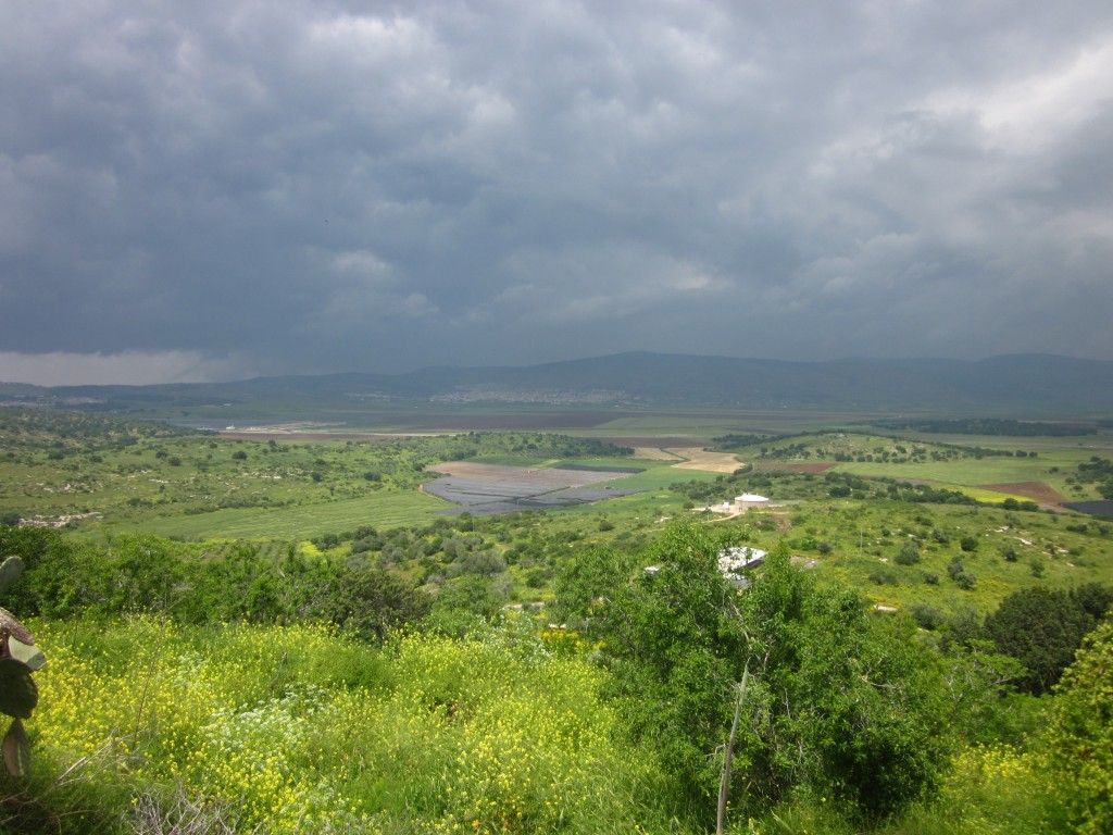 A sweeping view of the Jezreel Valley from ancient Tsippori. Photo by Nili M. Zaharony