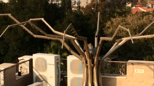 Qassam Tree located on the roof of the Sderot Yeshiva and a crane in the distance. Photo credit: Jordana Lebowitz