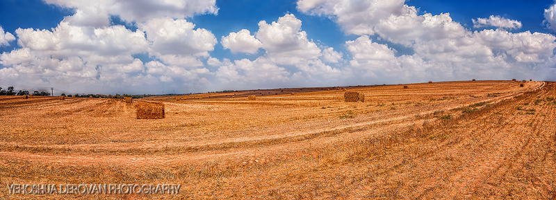 Rolling fields... Photo by Yehoshua Derovan