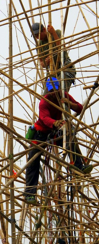 Knotting Joints of Big Bambu by Michael and Dog Starn. © 2014 by Heddy Abramowitz