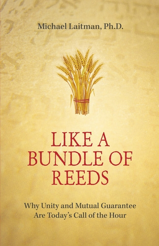 like-bundle-of-reeds-cover