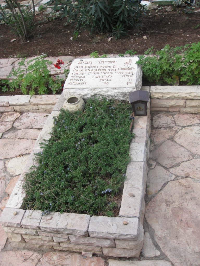 Grave of Eliyahu Hakim, Mount Herzl (Photo credit: CC-BY-SA  Deror Avi via Wikimedia Commons)