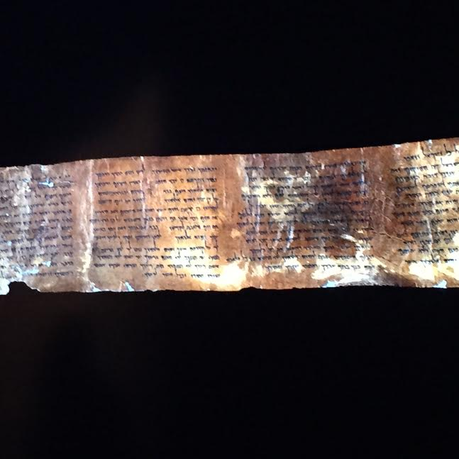 Scroll's fragment on display