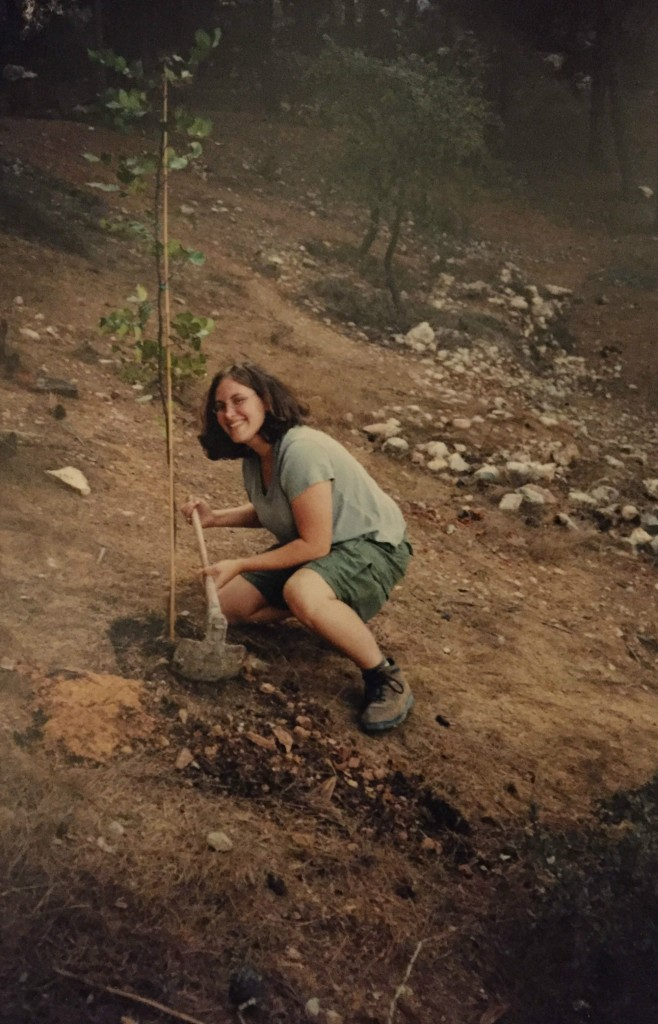 Planting the ill-fated carob tree I called Honi in the Jerusalem Forest in 2000. (courtesy)