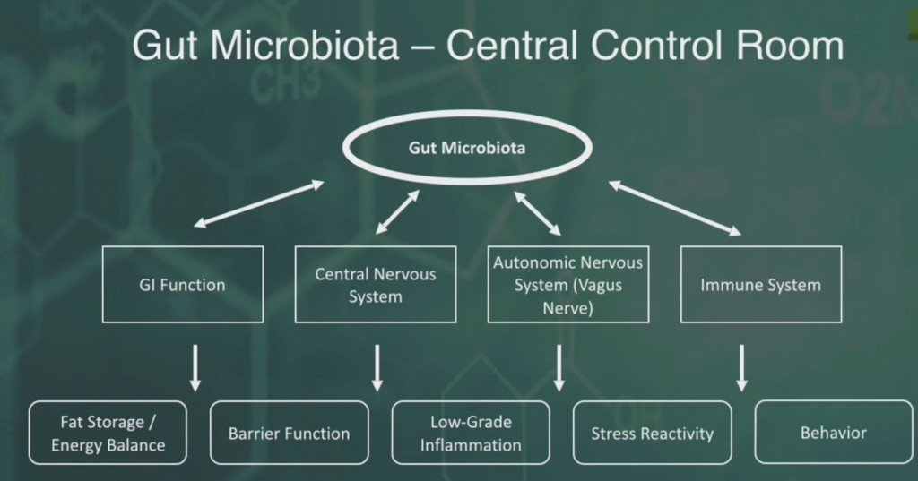 microbiome_effect