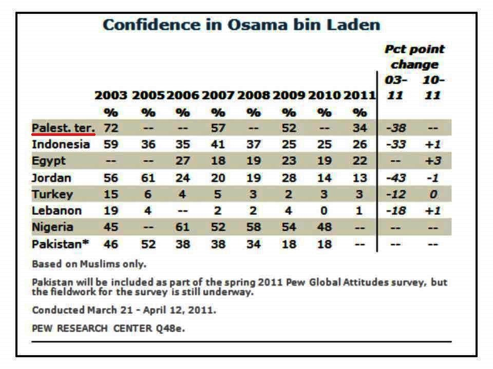 1-pal-confidence-in-binladen