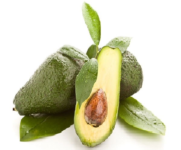 avocado600x600CROPPED