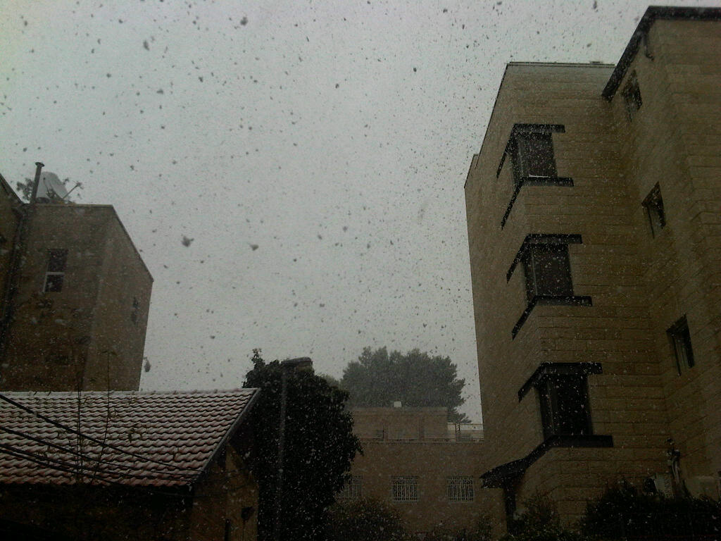Snow falls in Jerusalem, March 2, 2012 (photo credit: Aaron Kalman/Times of Israel)