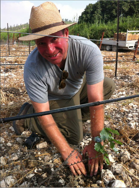 Elie Wurtman planting his grapes (Courtesy Bat Shlomo Winery)