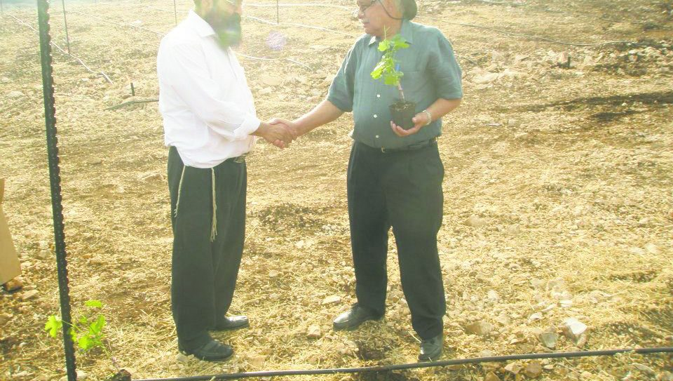 Jacques Capsouto with the rabbi certifying the kosher wines in his new vineyard.