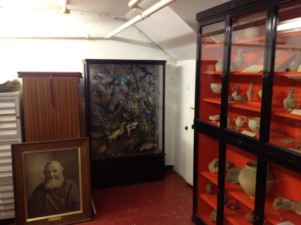 In the basement (from left), a portrait of a Victorian benefactor, a collection of birds, and artifacts from Fliinders Petrie's 1890 dig at Tell el-Hesy (Matti Friedman/Times of Israel)