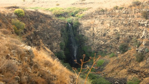 Gamla waterfall (photo credit: Shmuel Bar-Am)