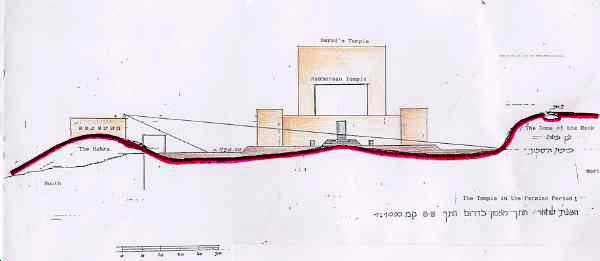 The original topography of the Hakra, as drawn by Harry Moskoff (Courtesy Harry Moskoff)