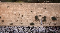 The Western Wall. (photo credit: Sliman Khader/Flash90)