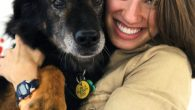 Seeks fido-lety in mates: Sarah Oren has helped find 40 matches for dogs and masters seeking a pet.