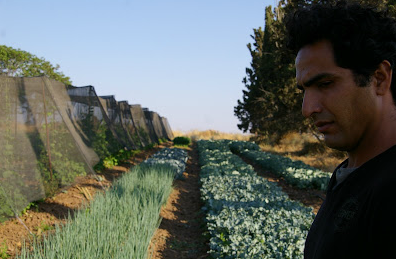 Boaz Havivian in his fields (Courtesy Havivian)