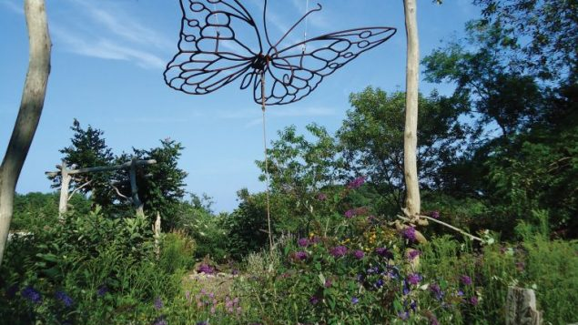 The butterfly garden at Felix Neck Wildlife sanctuary, above. Inset, a view from the sanctuary. Hilary Larson