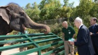 Peres at the zoo 002