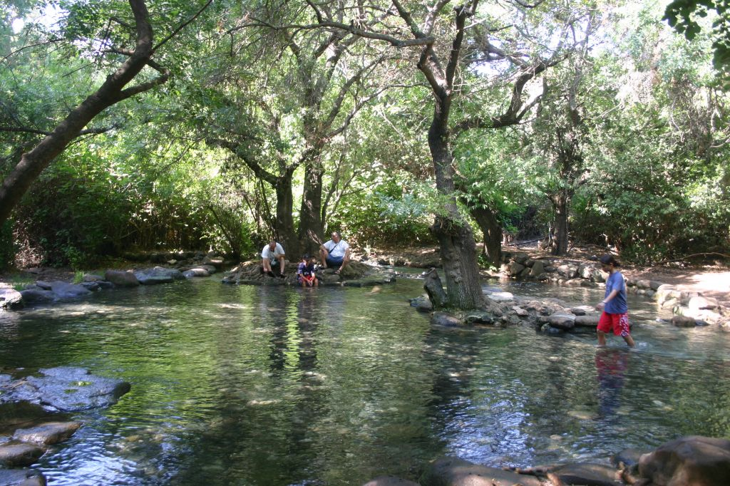 At Tel Dan Nature Reserve A Little Piece Of Heaven The