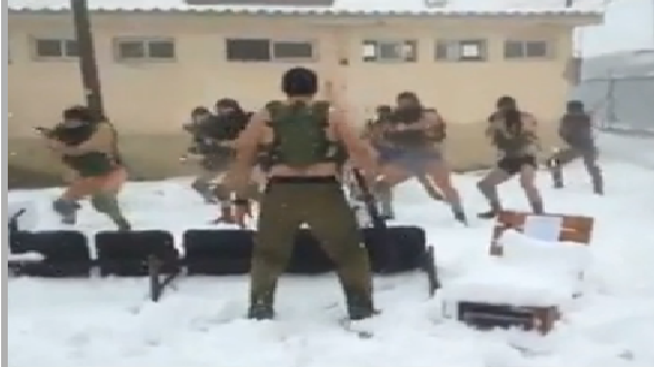 IDF soldiers training in the snow (screen capture: Walla)