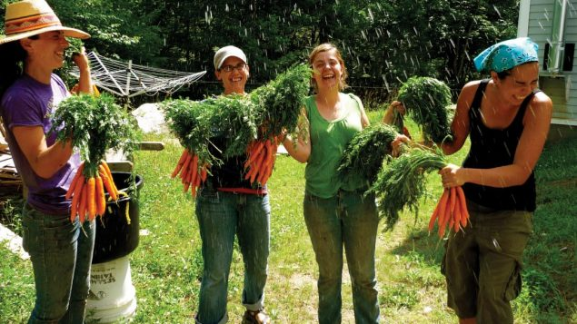 Immersive Jewish activities, like Hazon's farming program, are reengaging millenials, a study finds. Courtesy of Hazon