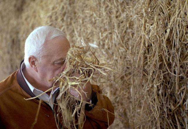 Former prime minister Ariel Sharon (photo credit: GPO)