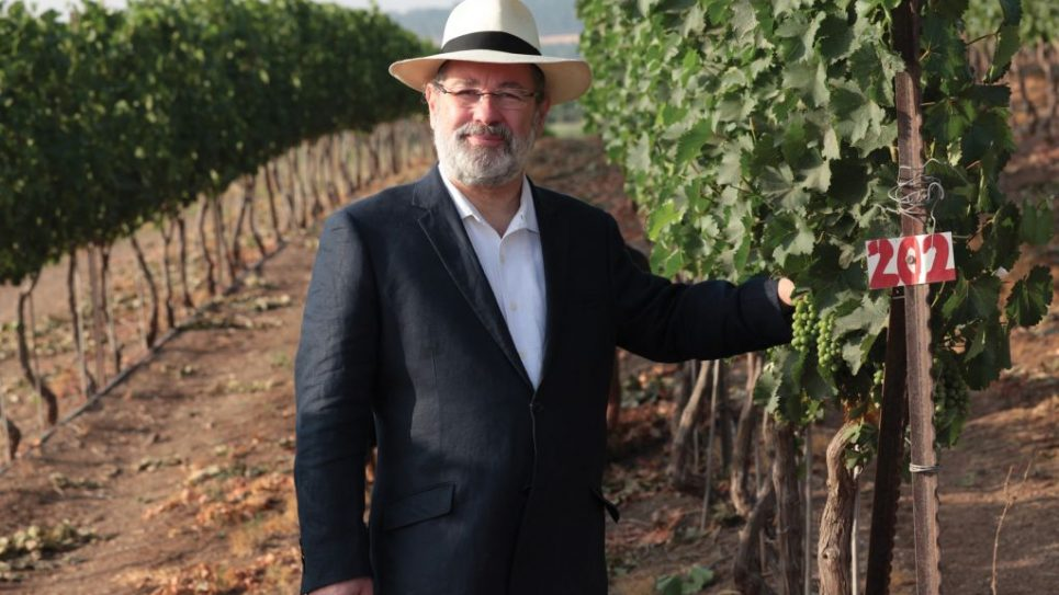 Pierre Miodownick in his Domaine Netofa vineyards in the Galilee. Courtesy of Domaine Netofa