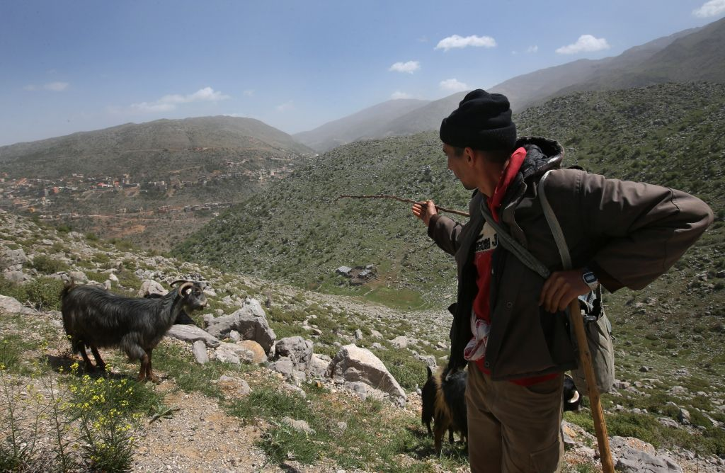 In this picture taken on Wednesday, April 16, 2014, Lebanese shepherd Ismail, 24, points to his house, background, as he herds his flock near the barbed wire that separates Lebanon and Israeli-occupied Shebaa farms, southeast Lebanon. (photo credit: AP/Hussein Malla)