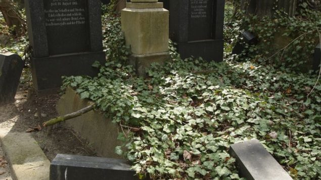 Jewish graves in Berlin were vandalized in 2008. Getty Images