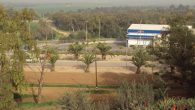 Kibbutz Dorot, about five miles east of Sderot. Jeffrey F. Barken