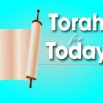 Torah-For-Today-300x206