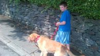 The author's son walking his dog. Courtesy of Gabrielle Kaplan-Mayer