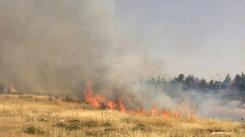 A fire near Jerusalem. (Courtesy Fire and Rescue Authority)