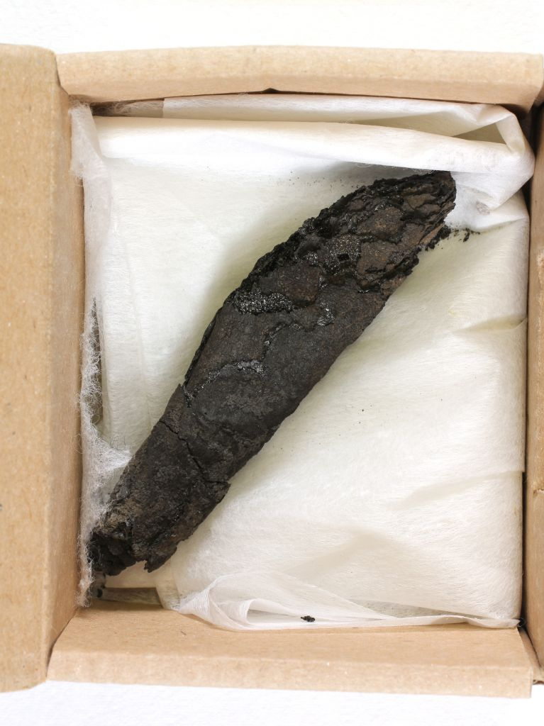 Ct Scan Of Charred Scroll Yields Oldest Biblical Remnant