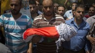 Palestinian Baby Dies In Arson Attack