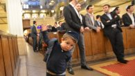 A young wedding guest at the Synagogue des Tournelles in Paris, Nov. 15, 2015. JTA