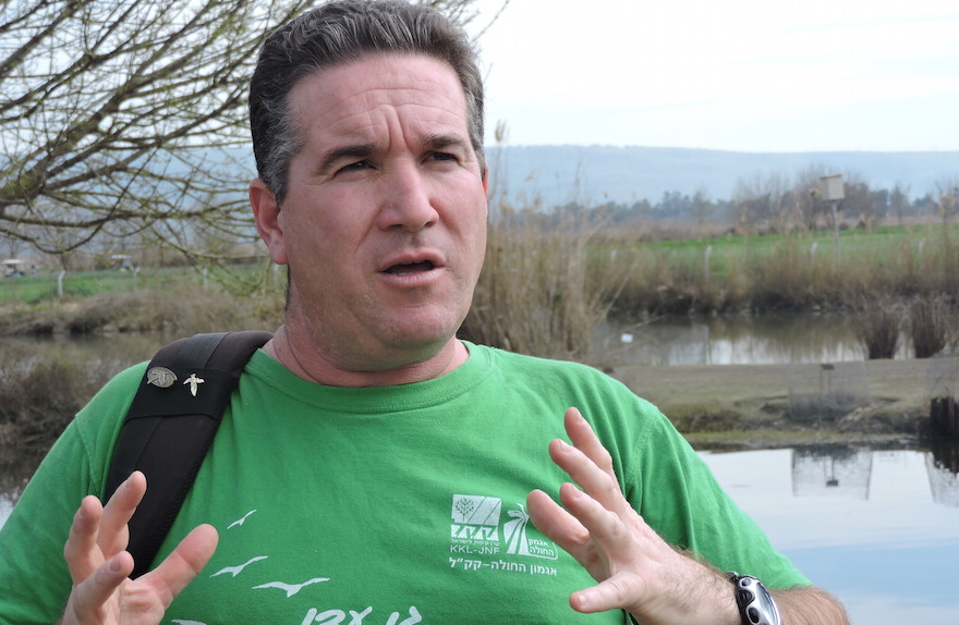 Shai Agmon is director of the Hula Valley Avian Research Center for Keren Kayemeth L'Yisrael-Jewish National Fund, which manages the valley's birdwatching park. (Ben Sales/JTA)