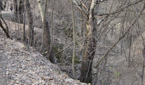 The Babi Yar ravine. (CC BY-SA Mark Voorendt/Wikipedia)