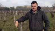 """""""For me, winemaking is more a question of spirit,"""" says Christophe Bardeau. The quality of grapes, he says, determines how good"""