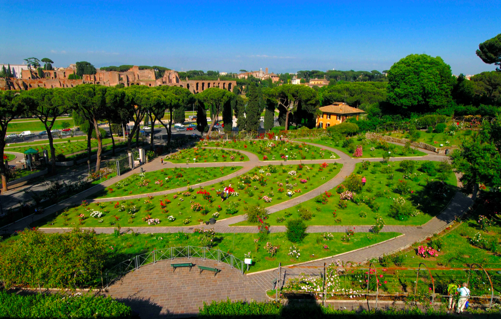 A view from above of Rome's public Rose Garden. The garden's paths form the shape of a menorah as a reminder of the burial grounds that the Jewish community had here for hundreds of years (photo by Luciano Rossetti, courtesy of Rome Garden Authority)