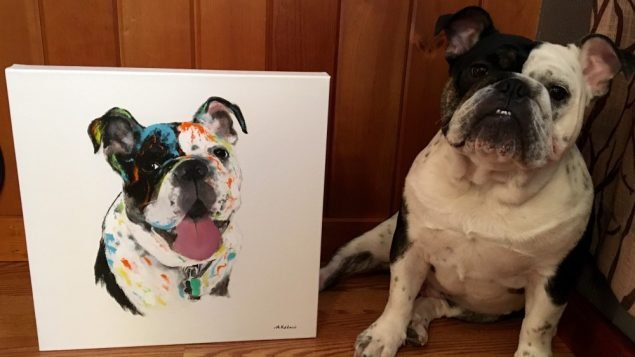 For Some, A Pet Is Worth a $1,000 Picture 1
