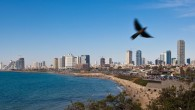 Tel Aviv's coast beautiful coastline