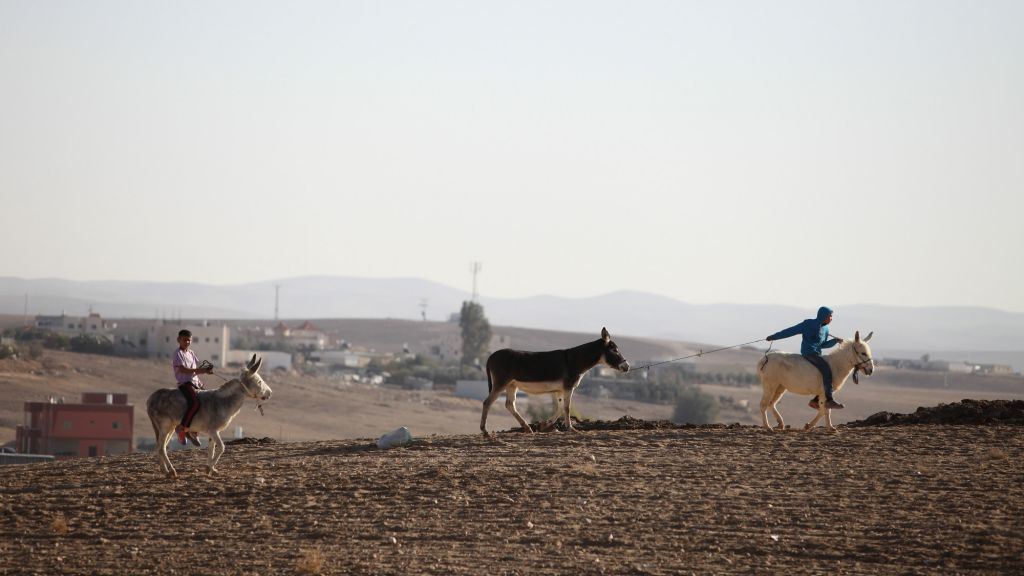 Young Bedouin boys seen riding donkeys near the Bedouin village of Kuseife, in the Negev, December 19, 2013. (Yaakov Naumi/Flash90)
