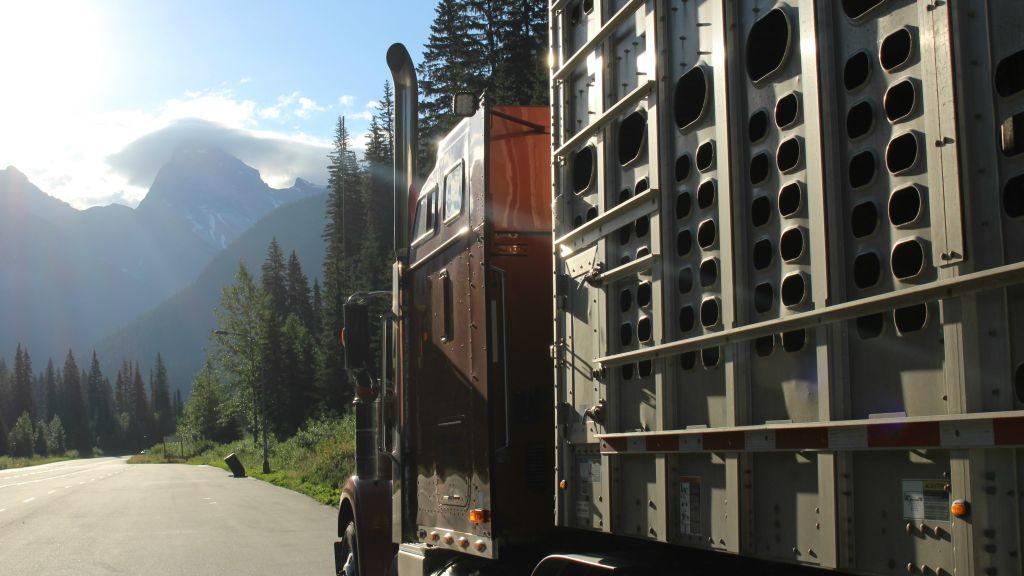 The modern-day Noah's ark, pictured here crossing the Canadian Rockies on August 1, 2016, will take about a week and a half to cover the more than 4,000 km between Vancouver and Toronto. (courtesy Gil Lewinsky)