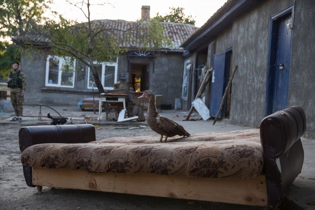 A duck sits on furniture strewn outside following a pogrom which drove 80 Roma residents from Loshchynivka, Ukraine. (courtesy of Marianna Zlobina)