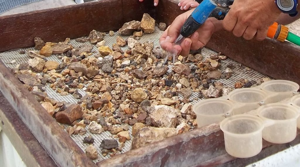 Volunteers at the Temple Mount Sifting Project attempt to discover historical artifacts. (Temple Mount Sifting Project)